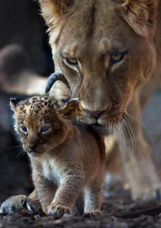 Mom and her baby