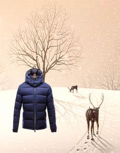 Moncler Acorus Euramerican Style Jacket For Men Blue Discounts Cheap Outlet Online Sale.