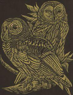 Owls (by cindyiscrafty)