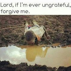 If i ever underappreciate you lord i am sorry count your Blessings