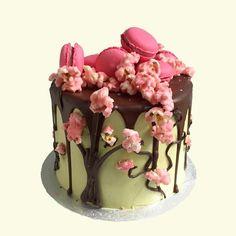 Japanese Matcha Sakura Cake This Chocolate Is Kissed With Silky Green Tea