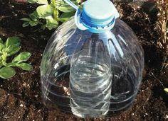 Grow Plants Using Less Water Using Solar-Drip Irrigation! Water Garden, Lawn And Garden, Como Plantar Salsa, Organic Gardening, Gardening Tips, Potager Bio, Drip Irrigation, Irrigation Systems, Aquaponics System