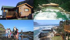 The Tsitsikamma National Park, part of the Garden Route National Park in South Africa, is a place where you can experience the outdoors, stunning marine Tsitsikamma National Park, Nature Reserve, Trials, Conservation, South Africa, Coastal, National Parks, Around The Worlds, Holidays