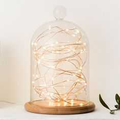 50 Warm White LED Copper Micro Fairy Lights | Lights4fun.co.uk