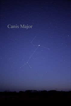 Canis Major close to Orion. It's brightest star Sirius shines in all different colors and is bigger than our sun
