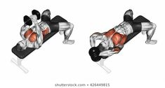 Stock Photo and Image Portfolio by Makatserchyk | Shutterstock Chest Workout At Home, Chest Workouts, Fit Board Workouts, Gym Workouts, At Home Workouts, Gym Workout Videos, Gym Workout For Beginners, Fitness Studio Training, Muscle Building Workouts