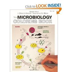 The Microbiology Coloring Book: I. Edward Alcamo, Lawrence M. Elson: 9780060419257: Amazon.com: Books