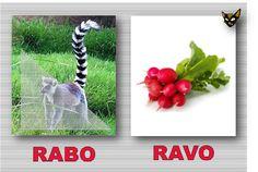 Zarampagalegando: Parellas imposibles. Rabo/Ravo