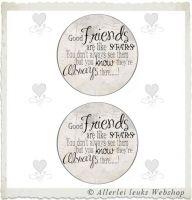 Knipvel 216 grote cirkels tekst Friends A4
