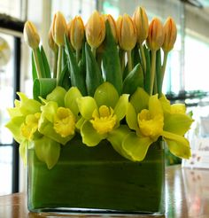 yellow/green orchids and yellow tulips