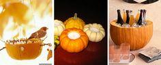 Pumpkin Reuses