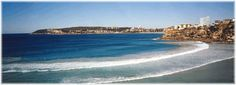 Freshwater Beach in Sydney