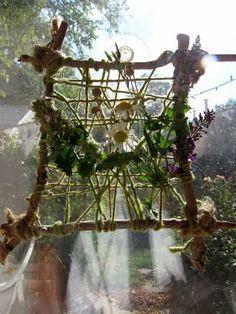 Weben in der Natur