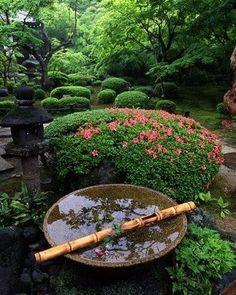 Japanese Garden Hvilke planter og trær for en Zen hage Asian Garden, Japanese Garden Style, Japanese Gardens, Garden Modern, Chinese Garden, Dream Garden, Garden Art, Water Features In The Garden, Water Garden