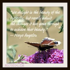 """""""We delight in the beauty of the butterfly, but rarely admit the changes it has gone through to achieve that beauty."""" `Maya Angelou"""