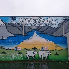 There's so much #streetart in #Christchurch #Newzealand this is from the parking…