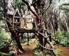 granolianberries:    bridge to terabithia treehouse    Treehuts / Smooth Yeti