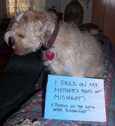 I peed on my mother's bed at midnight . . .