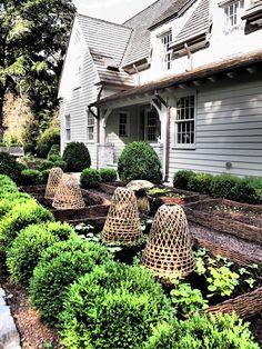 Garden Design Decking Kitchen Gardens - Design (love the basket plant covers to keep our little garden friends out) Potager Garden, Garden Landscaping, Residential Landscaping, Garden Spaces, Garden Beds, Garden Benches, Garden Cloche, Verge, Garden Cottage
