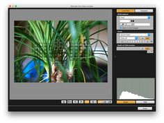 If you want to shoot tethered and have your images instantly appear on your tablet or laptop, here is a tutorial to help you get it set up.