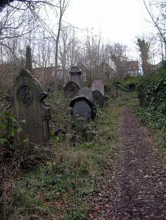 The Sheffield General Cemetery in Sheffield, South Yorkshire, England. Abandoned in 1978.