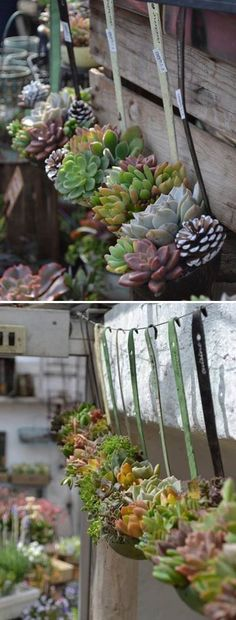 Recycle Old Soup Ladles into Hanging Succulent Planters #succulent #reuse  #recycling