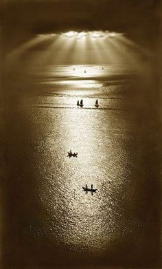 """artemisdreaming:    Fan Ho  """"Row, row row your boat gently down the stream. Merrily, merrily, merrily,merrily, life is but a dream."""""""