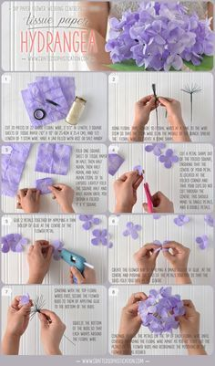 DIY Tissue paper Hydrangea Tutorial from Crafted to Bloom, Paper Floral Designs…