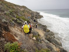 Cape to Cape .walking end to end in 7 days . Walking Holiday, Tough Girl, Ways To Relax, Western Australia, Walks, Trek, Westerns, Cape, Coastal