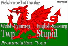 Welsh word of the day - Twp (stupid!)