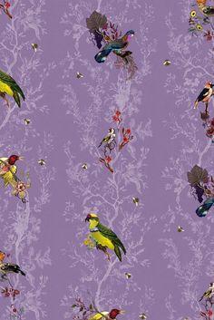 Timorous Beasties Wallcoverings - Birds n Bees
