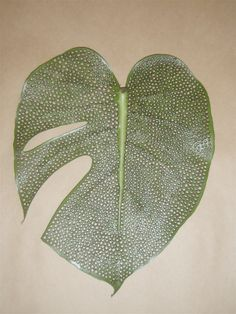 Monstereo Delico leaf. 2009. Nature Table, Leaf Art, Feathers, Cool Designs, Wedding Decorations, Arts And Crafts, Leaves, Craft Ideas, Autumn