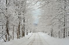 Quiet winter day in Vermont. I will always miss the quiet serenity and beauty of Vermont! Places To Travel, Places To See, Vermont Winter, Snowmobile Tours, Winter Pictures, Covered Bridges, Back To Nature, Winter Scenes, Winter Time