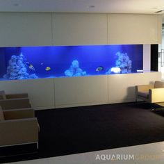large bespoke acrylic marine office aquarium