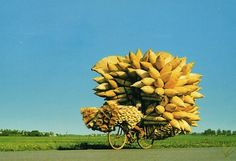 overloaded #vehicles, #vietnam, bicycle, #motorcycle, super vehicles