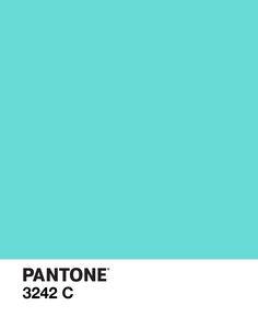 PANTONE 3242 C / color, design, aqua