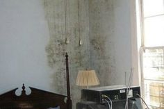 La muffa è un fungo che si forma negli ambienti  molto umidi. Non è semplice rimuoverla, ma seguendo i consigli 'della nonna' sarà possibile combattere nel modo migliore queste antiestetiche macchie verdi che si formano sui muri di casa.