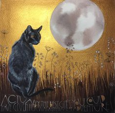 A full autumn moon and a beautiful black cat. Pure magic