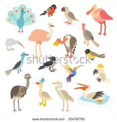Birds art. Bird world,vector set illustration. Birds icon, birds print. Isolated on white background.Goose,ostrich,heron,spoonbill flat characters. Emu,peacock,turkey cartoon style.Cocatoo,parrot,kiwi