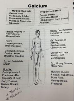 Electrolytes/Minerals: Calcium