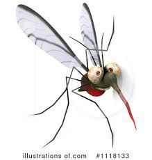 clipart of a mosquito - Google Search