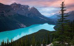 Herunterladen hintergrundbild peyto lake, 4k, sonnenuntergang, berge, wald, blue lake, kanada