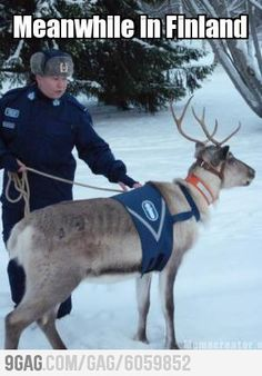 Meanwhile in Finland Funny V, Funny Memes, Finnish Memes, Meanwhile In Finland, Night Shadow, Dumb People, Good Neighbor, Police Cars, Helsinki