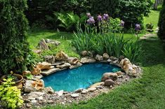 DIY pond filter design ideas will be very useful to people who want to have a garden pond or a koi pond and enjoy their water feature. A garden pond Beautiful Backyard Fish Pond Landscaping Ideas 2 image is part of 50 Beautiful Backyard Fish Pond Garden L Small Backyard Ponds, Ponds For Small Gardens, Outdoor Ponds, Small Ponds, Modern Backyard, Backyard Ideas, Back Yard Pond Ideas, Outdoor Fountains, Tropical Backyard