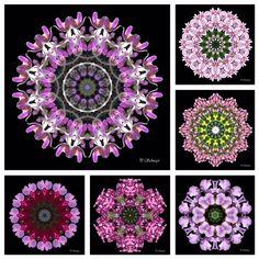 """Mandala """"Mix lila""""  kreativesbypetra Petra, Crochet Necklace, Mandala, Jewelry, Jewlery, Jewerly, Schmuck, Jewels, Jewelery"""
