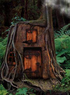Tree Stump Gnome Homes On Pinterest