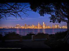 "Sam Antonio Travel and Fine Art Photography  -   ""Downtown San Diego Skyline from Bayview Park in Coronado"""