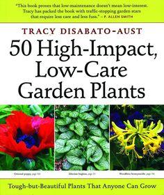 HIGH IMPACT LOW CARE GARDEN PLANTS - Pinetree Garden Seeds - Books