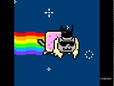 Lady gaga nyan cat