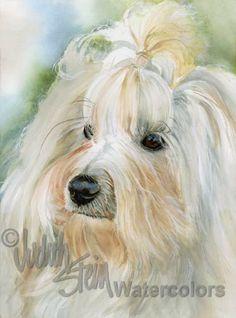 HAVANESE Dog Pet Portrait Watercolor Painting Art Print